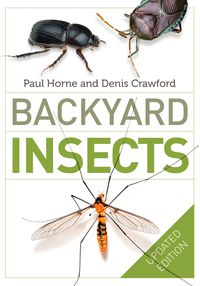 Backyard Insects Updated Edition